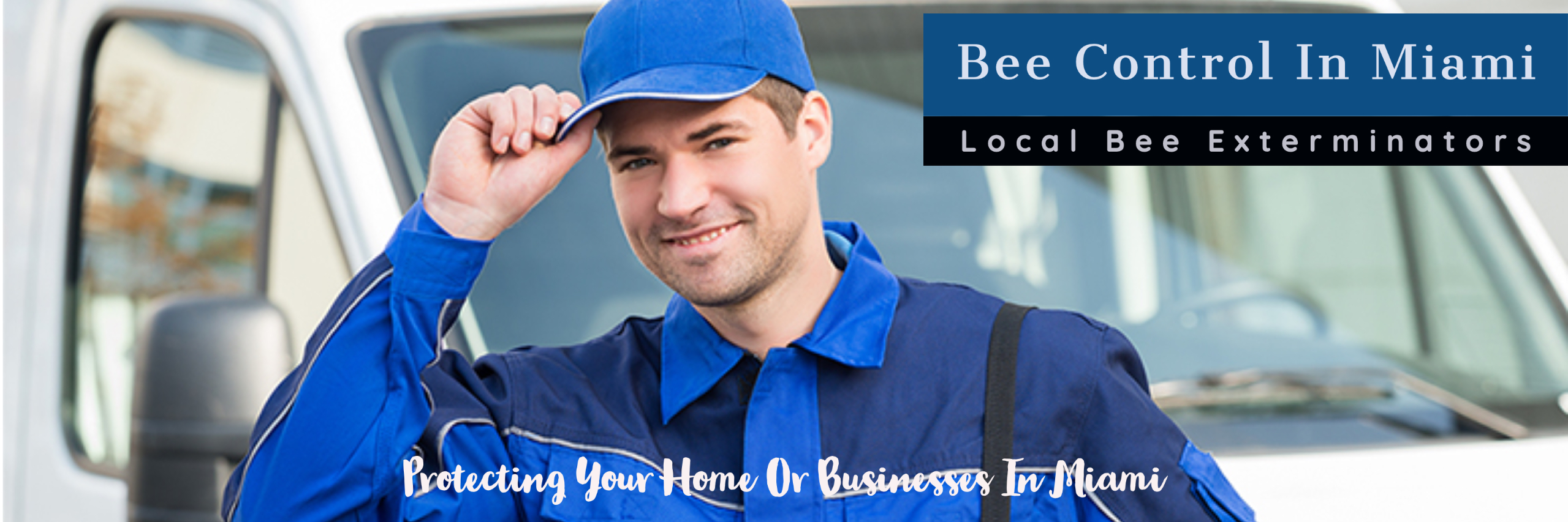 Trinity Pest Solutions - Bee Control - Bee Removal